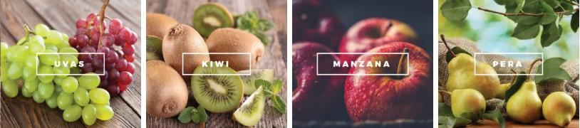 frutas de exportacion